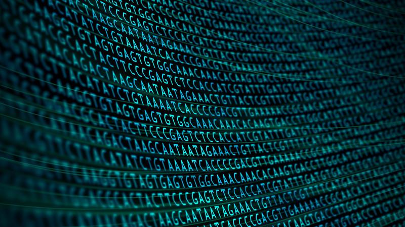 Inteligência artificial identifica antepassado humano que até aqui só se suspeitava ter existido