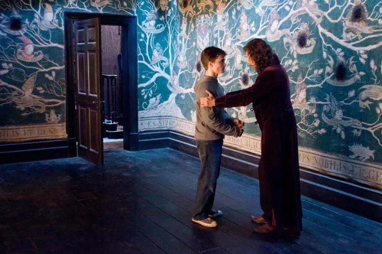 Agora sim, o verdadeiro desafio para os Potterheads. Não vai ser fácil conseguir 12/12