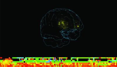 """""""Cérebro: Mais Vasto que o Céu"""", na Fundação Gulbenkian: O elogio da mente"""
