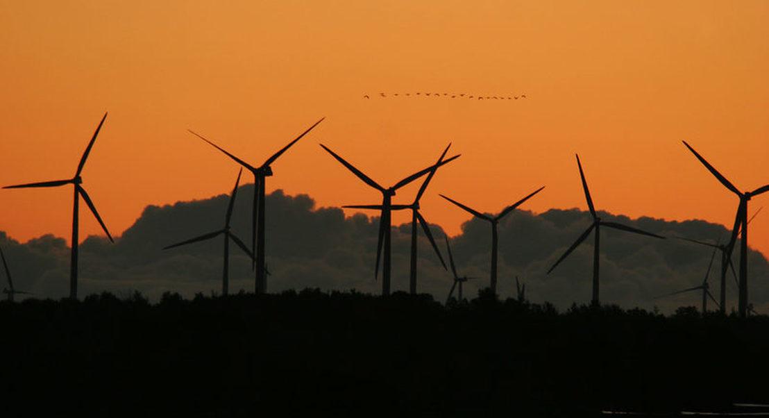 Emprego nas energias renováveis vai mais do que triplicar até 2030