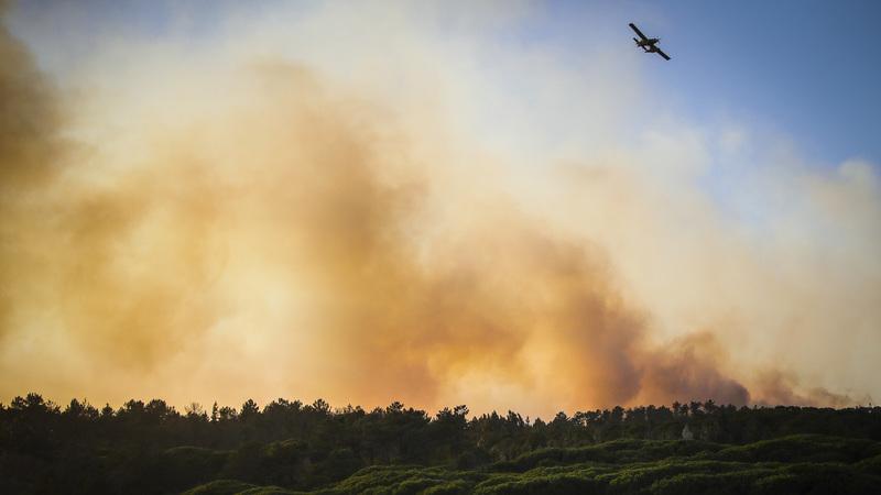 Plano para reduzir área ardida a metade até 2030 apresentado em Lisboa