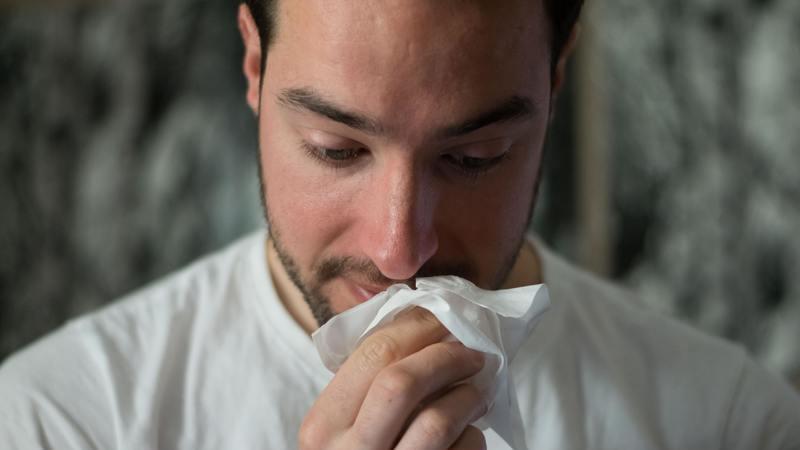 Tem sofrido com alergias ultimamente? Saiba o que fazer para acalmar os sintomas