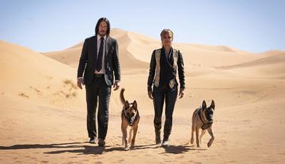 """Keanu Reeves, Halle Berry, armas, cães e até um cavalo: as primeiras imagens de """"John Wick 3"""""""