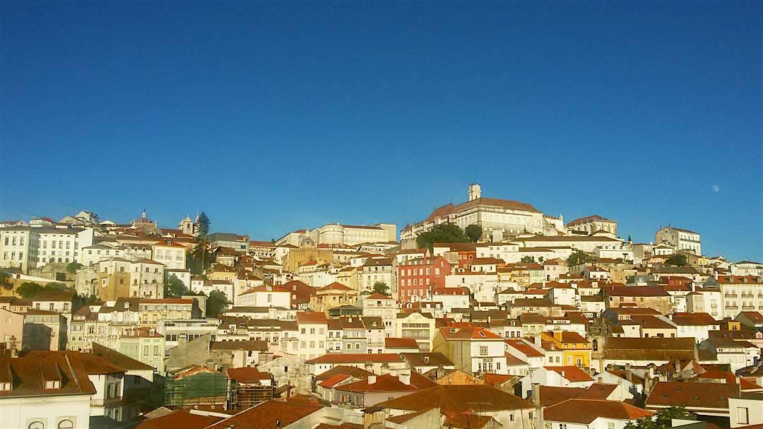 """Incêndios: Duas centenas de pessoas pedem em Coimbra """"Respeito por Portugal"""""""