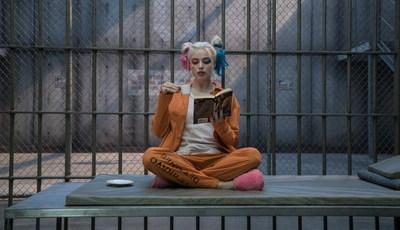 """""""Girl power"""" em força no mundo dos super-heróis: filme sobre Harley Quinn será realizado por mulher"""