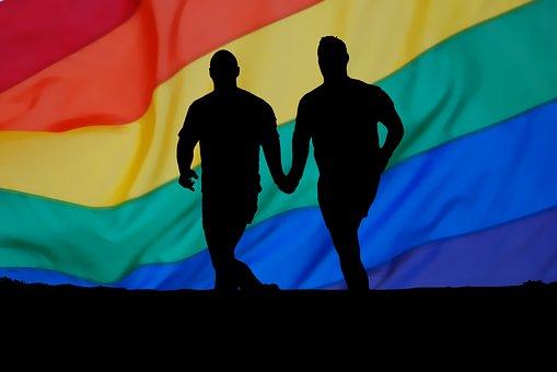 Estudos científicos comprovam relação entre o consumo de químicos e a homossexualidade?