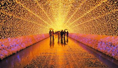 Um deslumbrante jardim com 8 milhões de luzes para iluminar o inverno