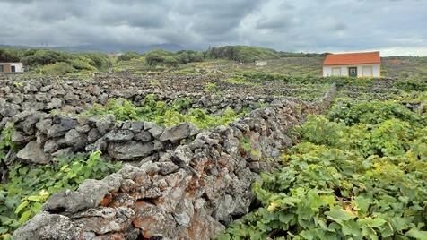 Um passeio pela Ilha Terceira