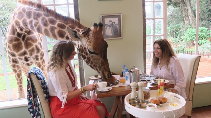 Giraffe Manor: neste hotel as girafas é que mandam