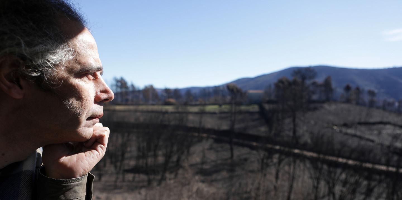 Incêndios: Governo duplica para 800 mil euros limite de apoio aos agricultores