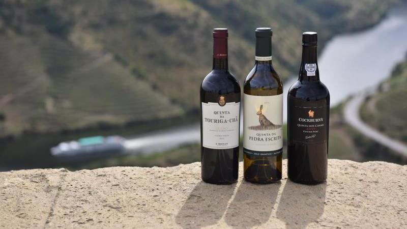 """Foz Côa: """"Capital do Douro Superior"""" elege os três melhores néctares da região"""