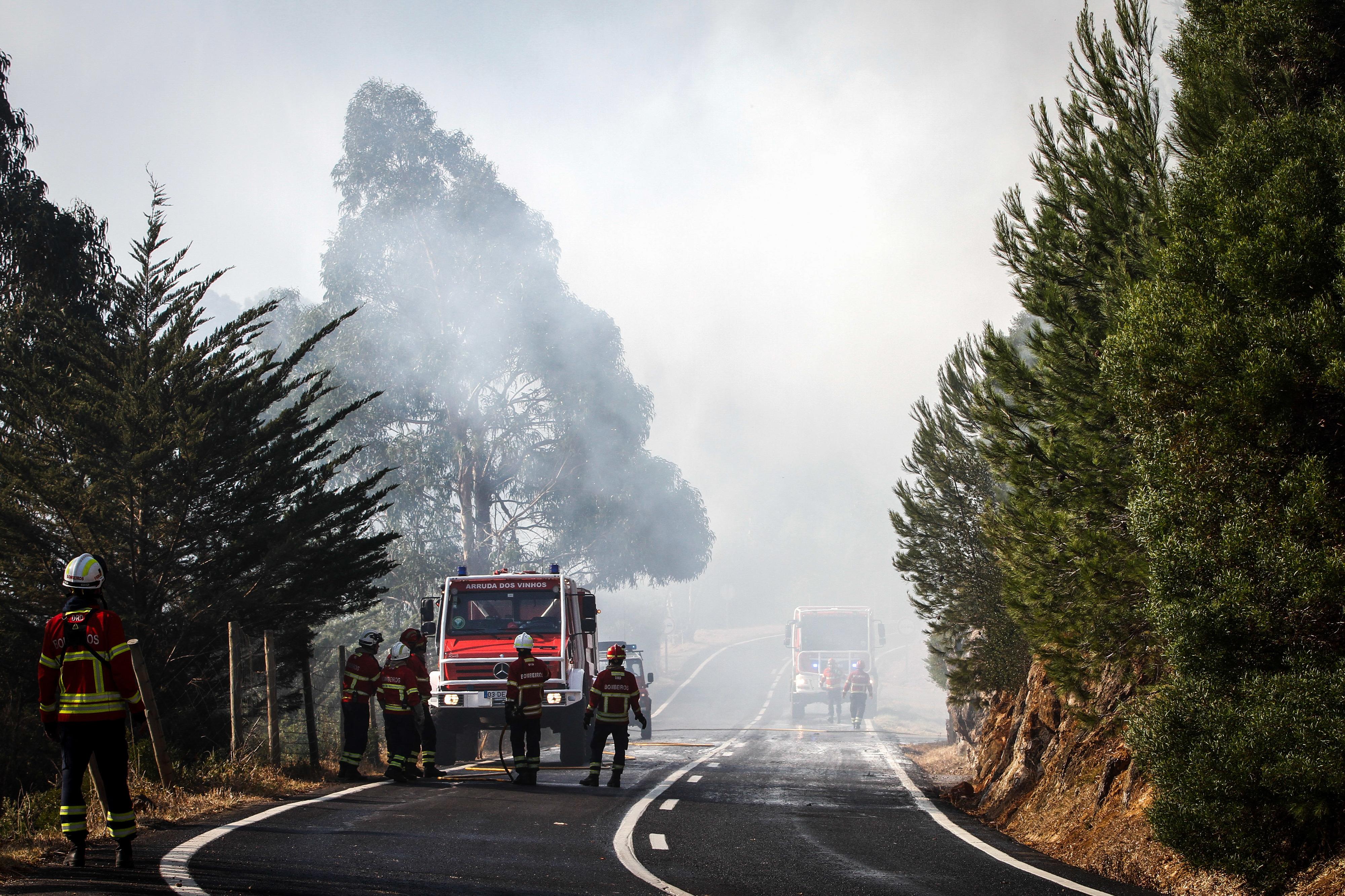 Incêndios: Governo prevê investir 103 milhões de euros na prevenção durante este ano