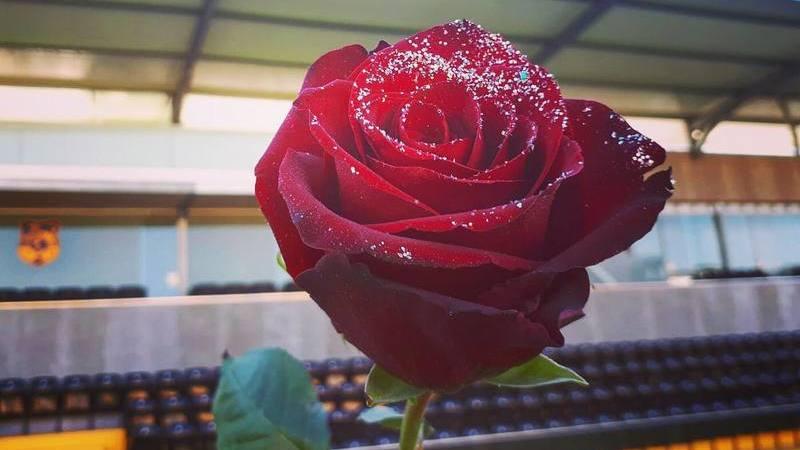O amor chegou mesmo pelo ar aos jogadores do Lusitânia Lourosa