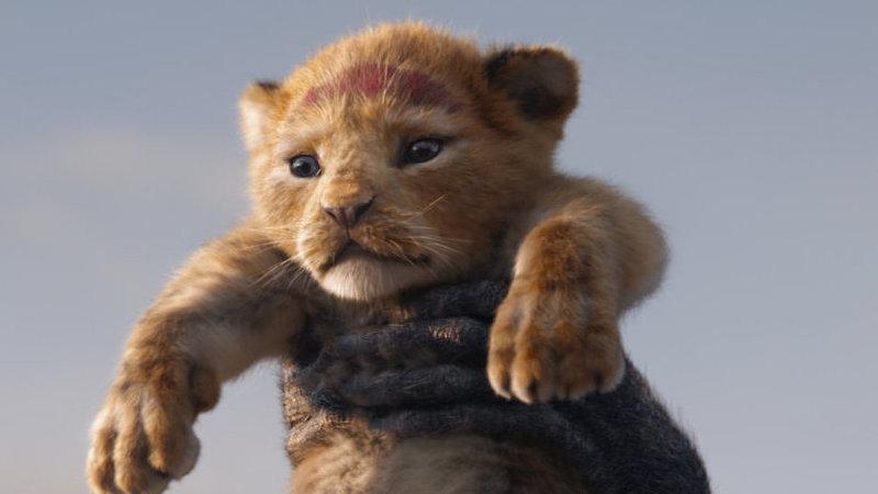 """""""O Rei Leão"""": fãs cantam as canções do filme"""