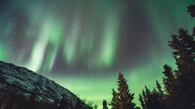 Aurora Boreal: Assista a um dos fenómenos mais incríveis da natureza no conforto de sua casa