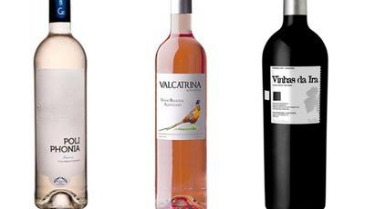 """A Confraria dos Enófilos reuniu-se e escolheu os """"Melhores Vinhos do Alentejo"""""""
