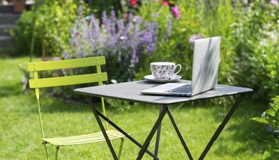 15 sites e blogues de referência para apreciadores de plantas e jardins