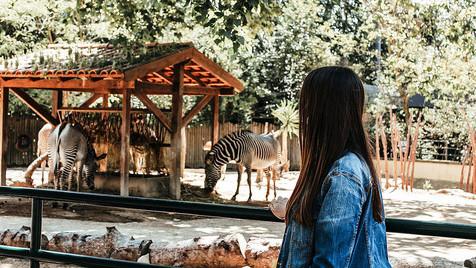 No Jardim Zoológico de Lisboa