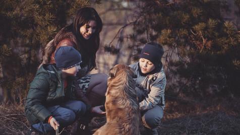 Melhor forma de conhecer os vizinhos: adotar um cão