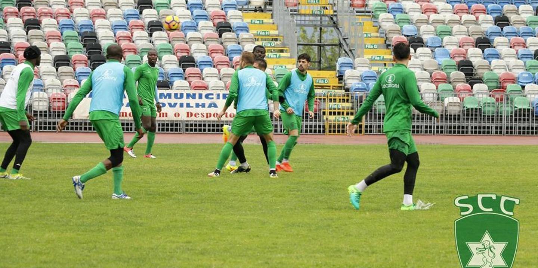 Jogadores do Sporting da Covilhã reflorestaram encosta junto ao estádio