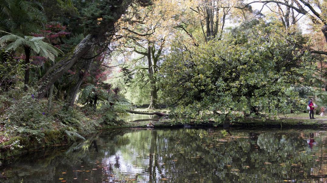 Terra Nostra: um dos mais belos jardins do mundo fica nos Açores