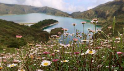 Das lagoas às vacas: O que fazer em São Miguel, se viaja com crianças