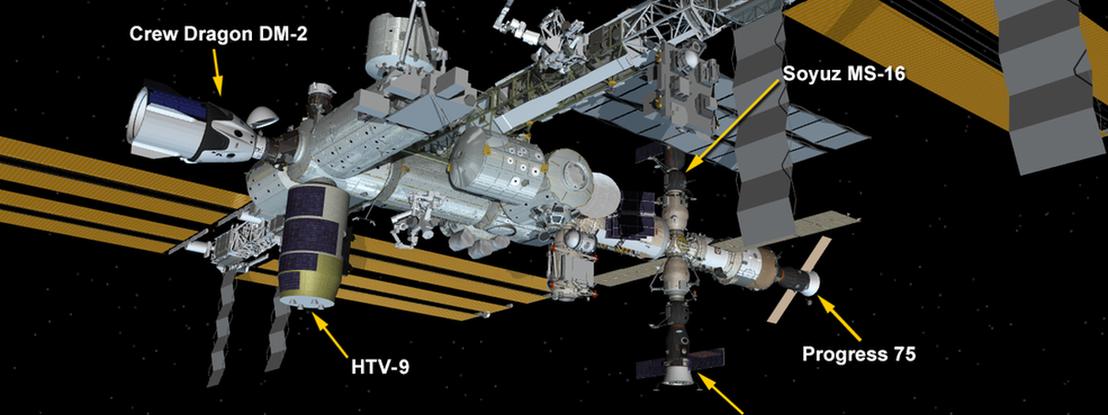 Crew Dragon é a quinta nave ligada à Estação Espacial Internacional e não tem data para regressar à Terra