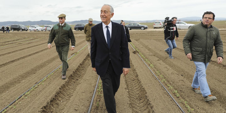 """Covid-19: Marcelo visitou produção de tomate para mostrar """"país que está a produzir"""""""