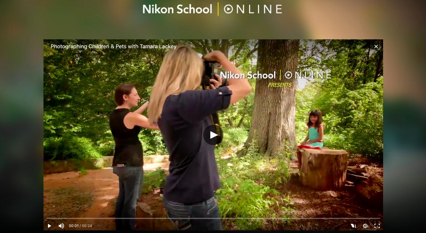 A Nikon Está A Dar Cursos De Fotografia Online Completamente Gratuitos Site Do Dia Sapo Tek