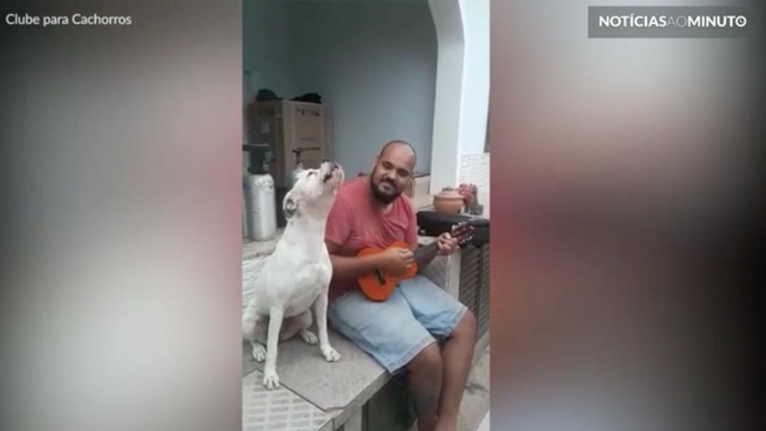 Cão canta emocionado em parceria com o dono