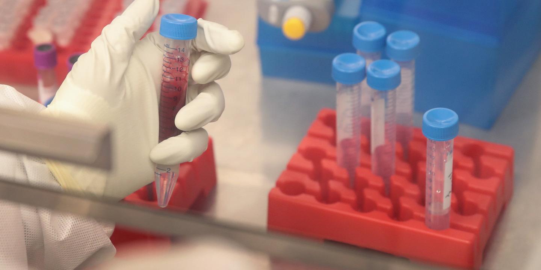 Cientistas criam tubo guia biodegradável para regeneração de nervos