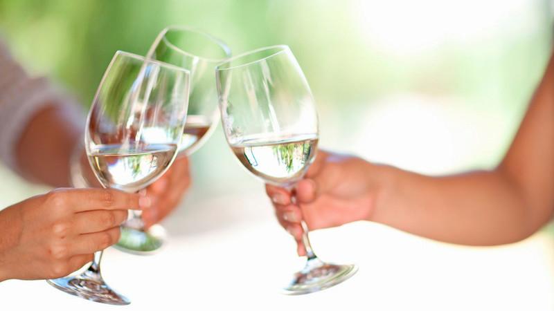 Seleção de 40 vinhos, leves e frescos, para acompanhar as refeições em boa companhia