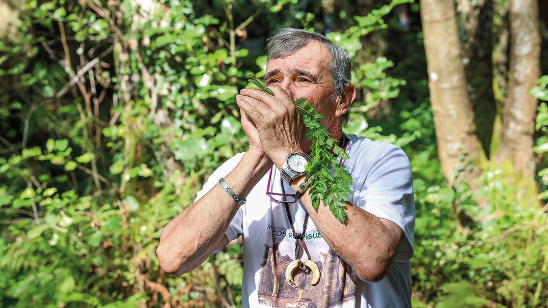 Da Serra Morena à selva humana: a longa viagem do homem-lobo
