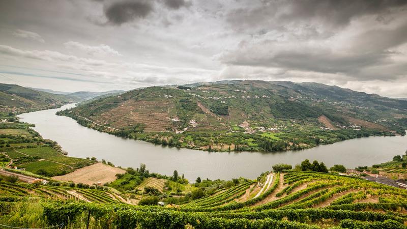 Douro considerado um dos melhores destinos do mundo para 2020