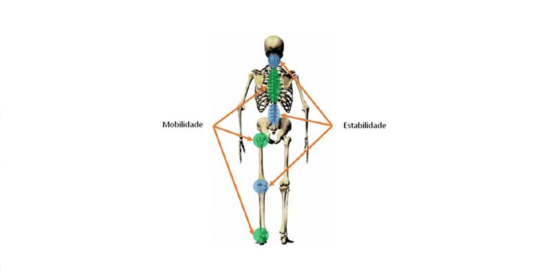 Os benefícios e a importância da fisioterapia