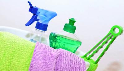 Devia lavar isto todos os dias