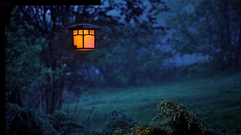 Iluminação para um jardim perfeito