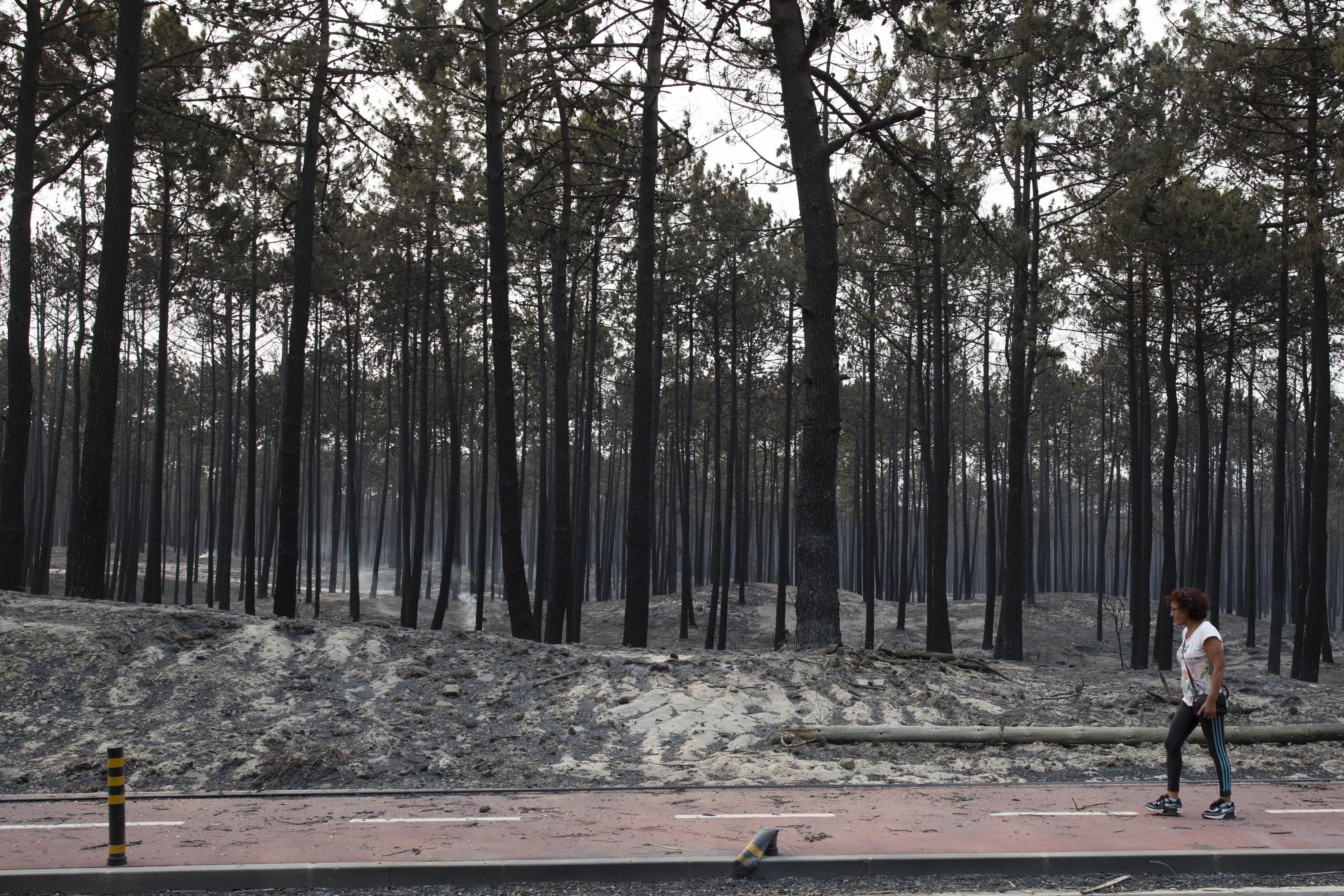 """Costa destaca acordo com familiares de vítimas para """"procurar reparar o que é irreparável"""""""