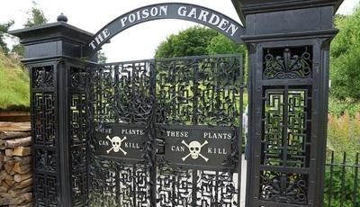 Inglaterra: já conhece o jardim mais perigoso do mundo?