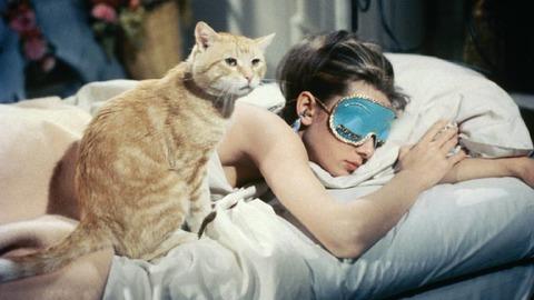 Sono de Beleza: 5 apps que a vão ajudar a dormir como um bebé