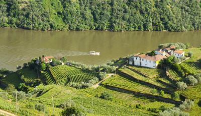As mais belas fotografias do Douro