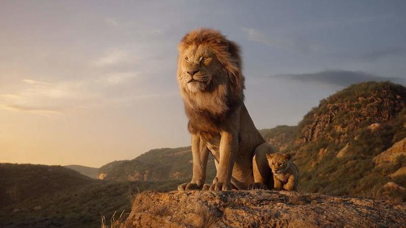 """Disney volta a ganhar: """"O Rei Leão"""" domina bilheteiras mundiais"""