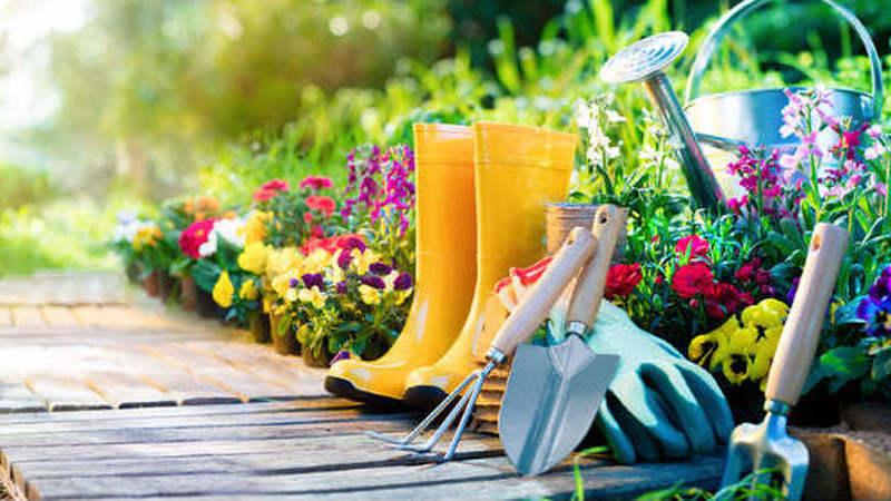 Descubra os benefícios de ter um jardim em casa