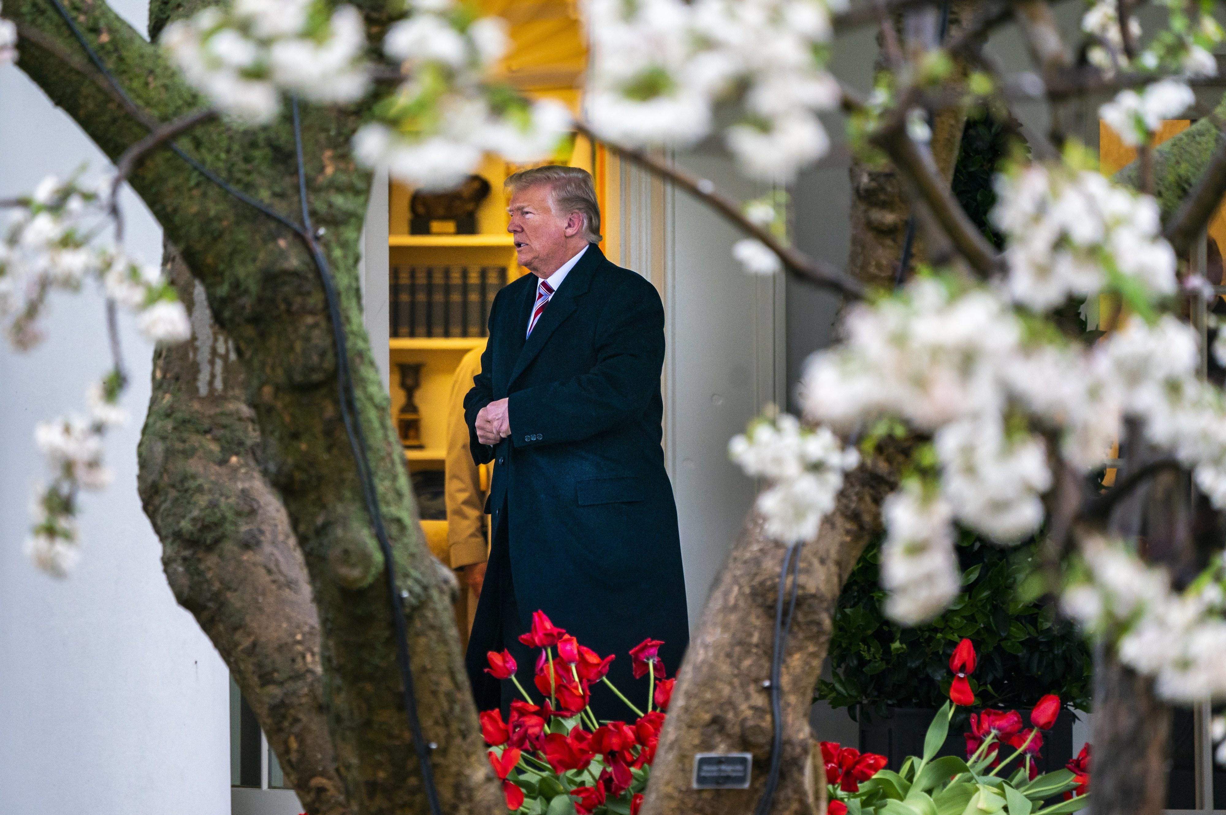 """Trump elogia atitude """"aberta"""" e """"respeitável"""" de líder norte-coreano"""