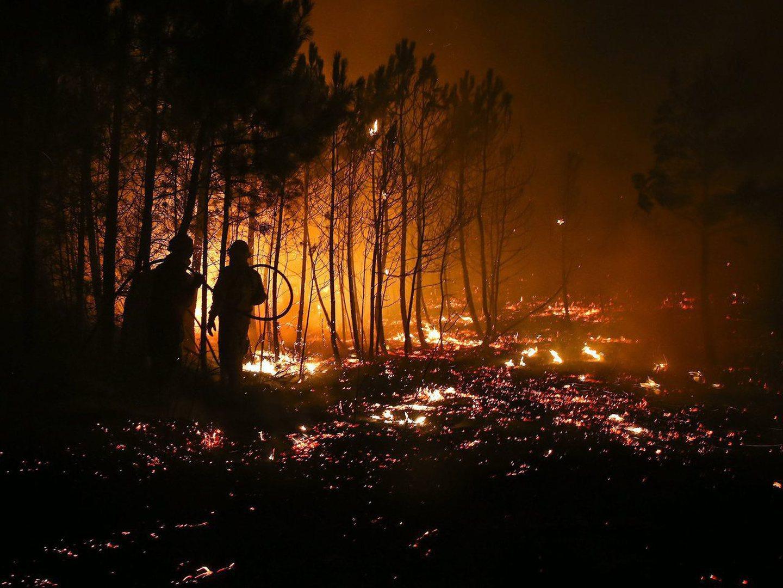 Incêndios: Pampilhosa da Serra necessita de três milhões para vias municipais e habitações