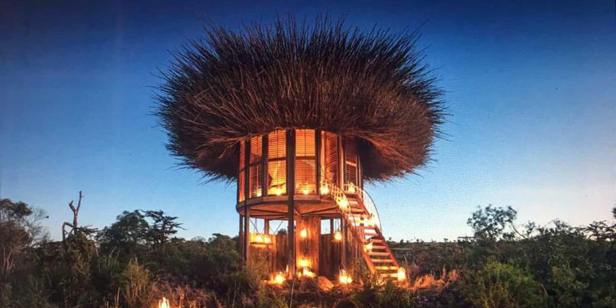 Dormir num ninho no meio da savana africana
