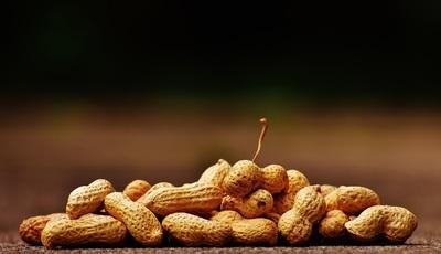 Sabia que os amendoins são legumes? Mas são alergénicos e calóricos