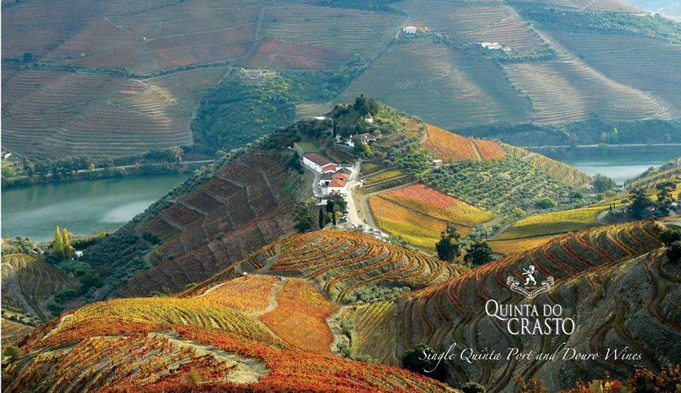 Vinhos: Quinta do Crasto apresenta primeiro rosé