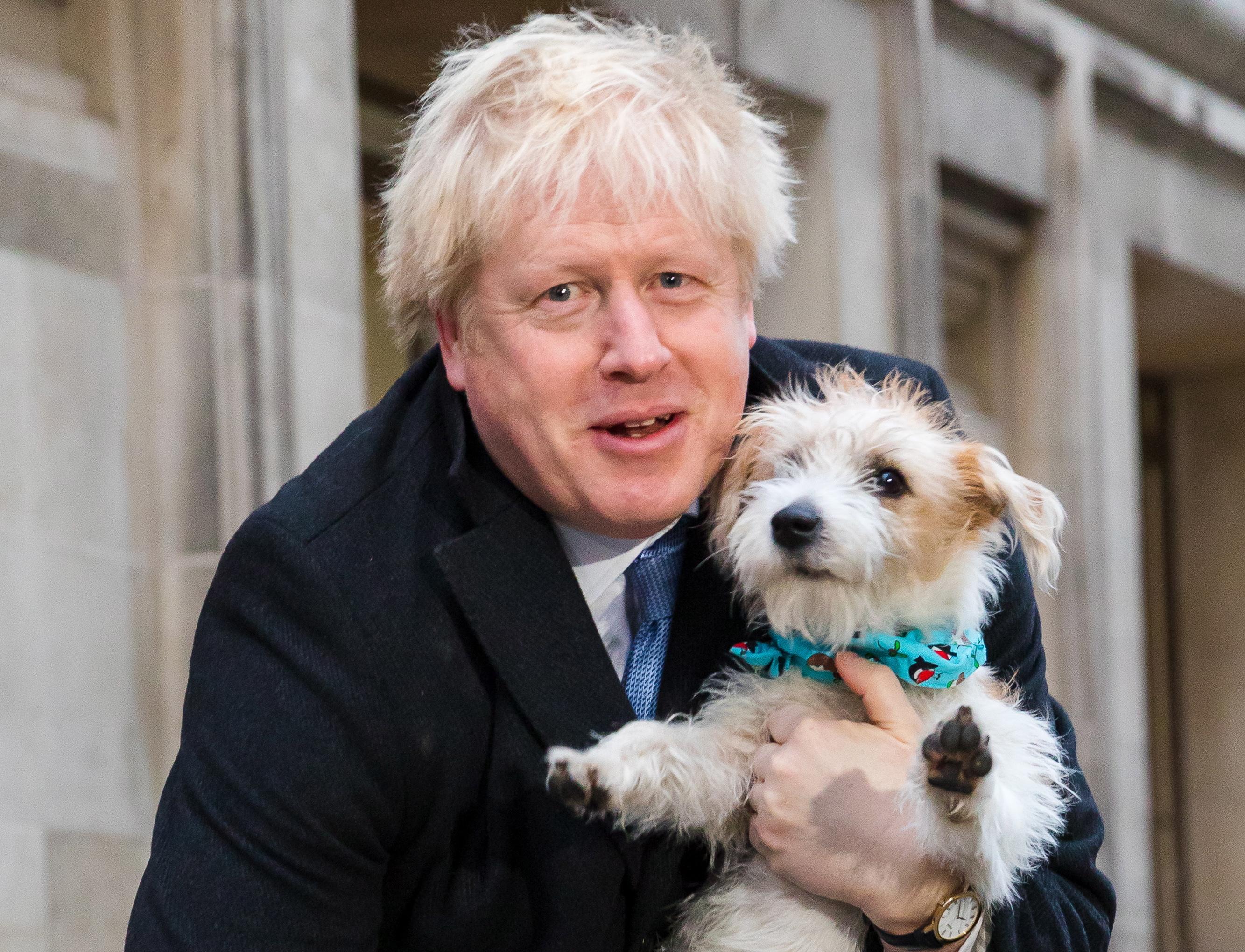 De manhã a maioria de Boris, à tarde o 'impeachment' ridículo de Trump. A democracia é muito isto