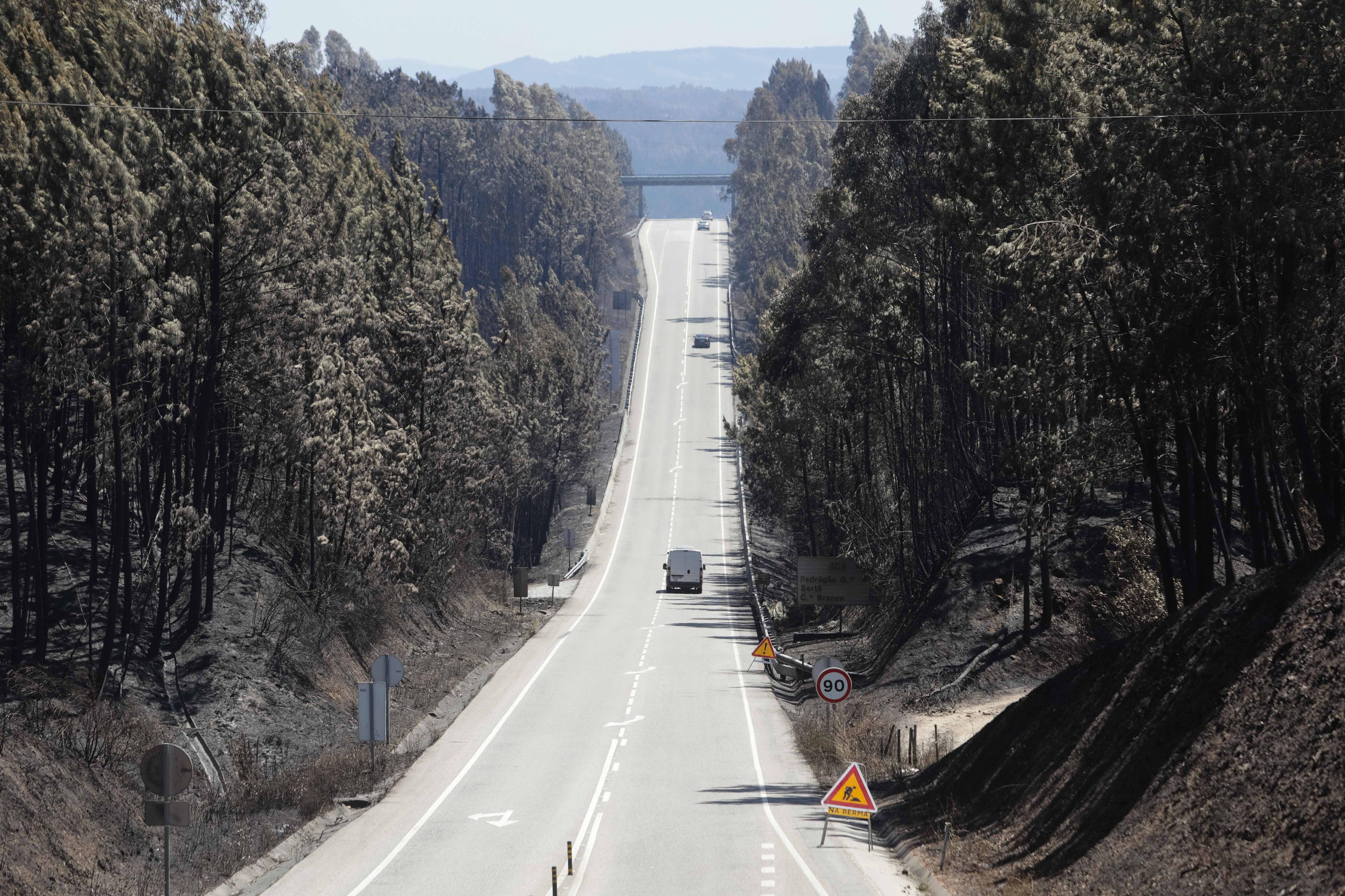 Proteção Civil alerta para condições favoráveis a fogos florestais na próxima semana